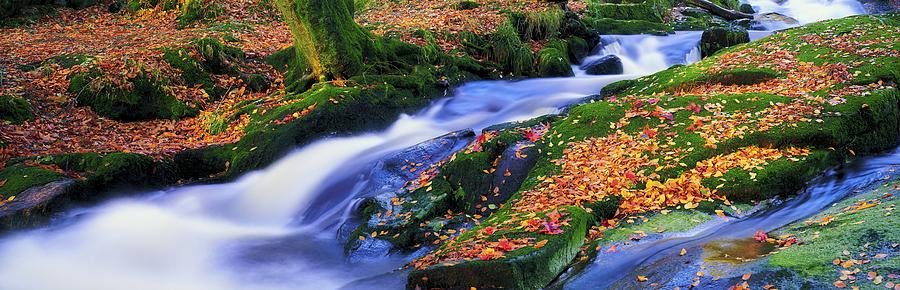Autumn Photograph - Glenmacnass Waterfall, Co Wicklow by The Irish Image Collection
