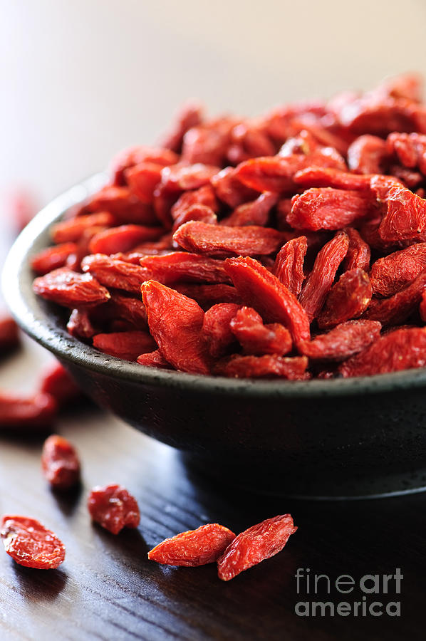 Goji Berries Photograph