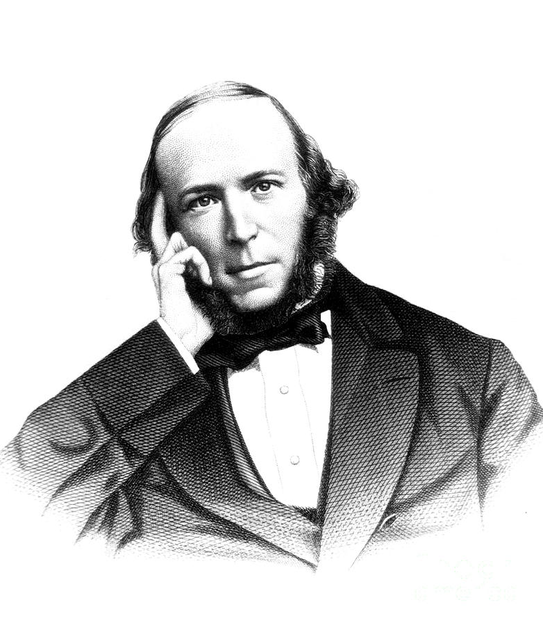 Herbert Spencer, English Polymath Photograph  - Herbert Spencer, English Polymath Fine Art Print