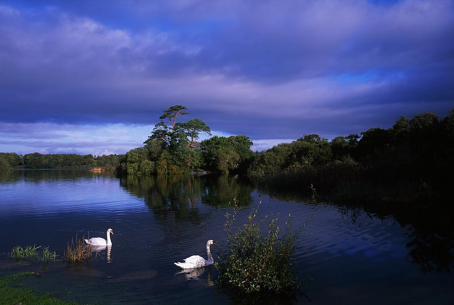 Lough Leane, Killarney, Co.Kerry Photos of Landscapes Landscape ...