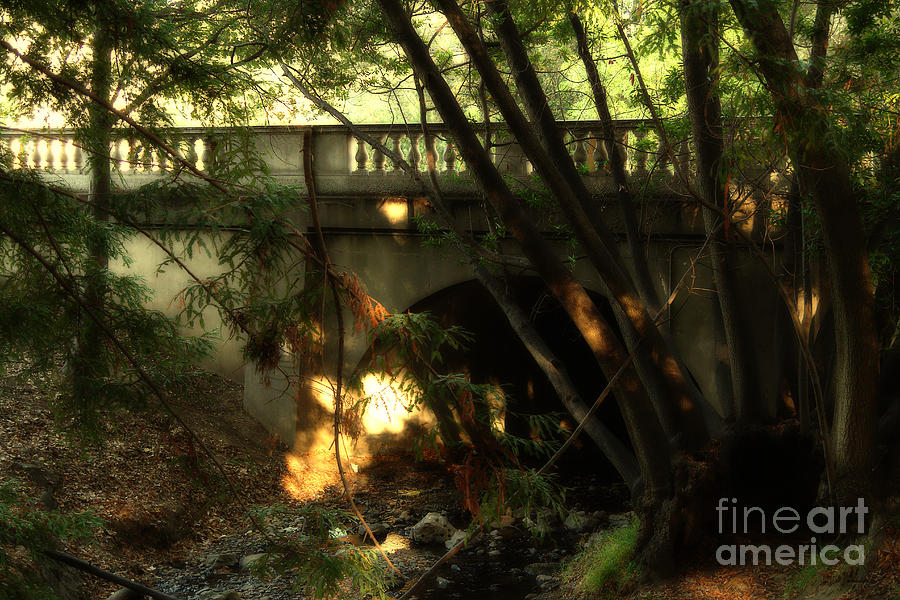 Pedestrian Bridge And Strawberry Creek  . 7d10132 Photograph  - Pedestrian Bridge And Strawberry Creek  . 7d10132 Fine Art Print