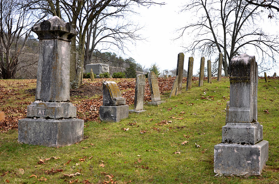 Pleasant Forest Cemetery Photograph