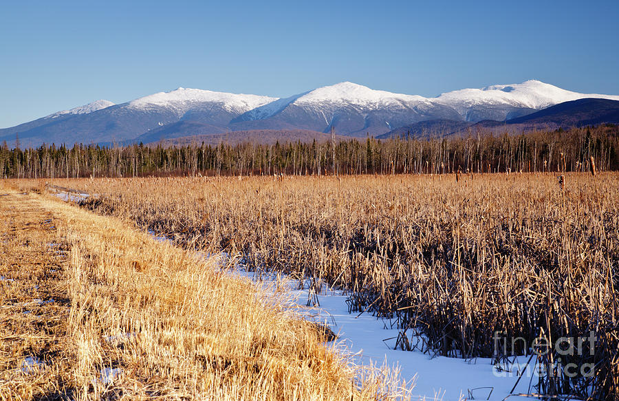 Pondicherry Wildlife Refuge - Jefferson New Hampshire Photograph