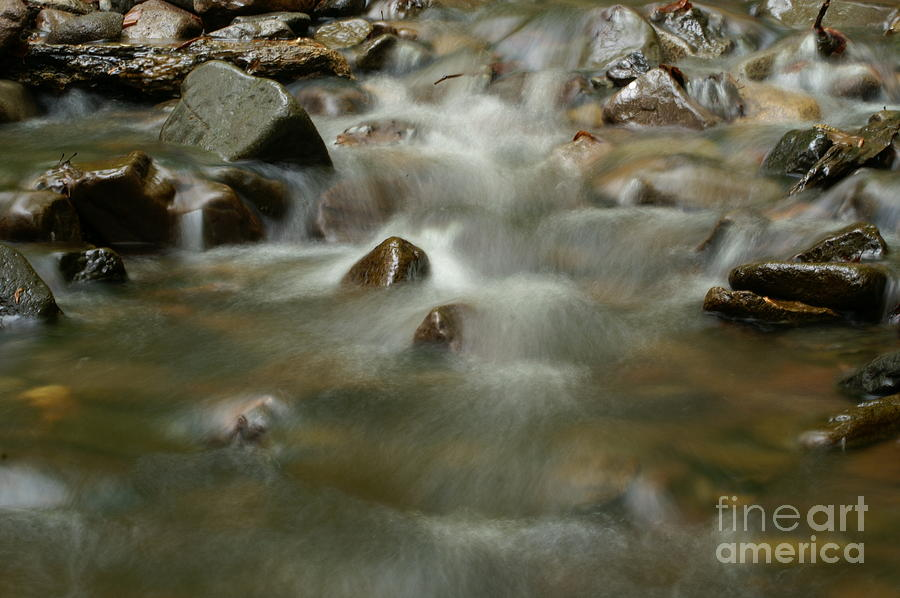 Nature Photograph - River by Odon Czintos