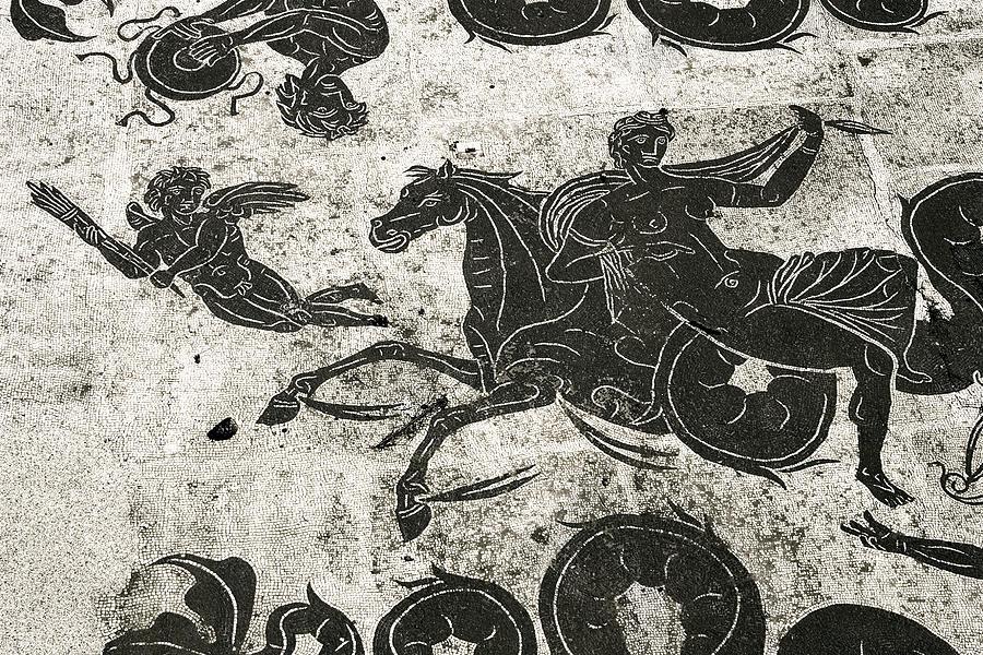 Mosaic Photograph - Roman Mosaic, Ostia Antica by Sheila Terry