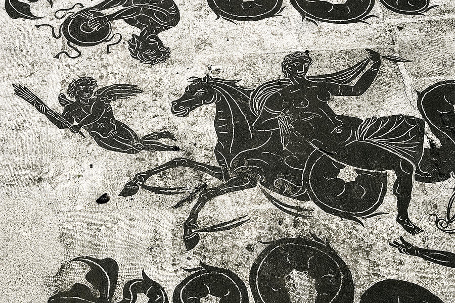 Roman Mosaic, Ostia Antica Photograph