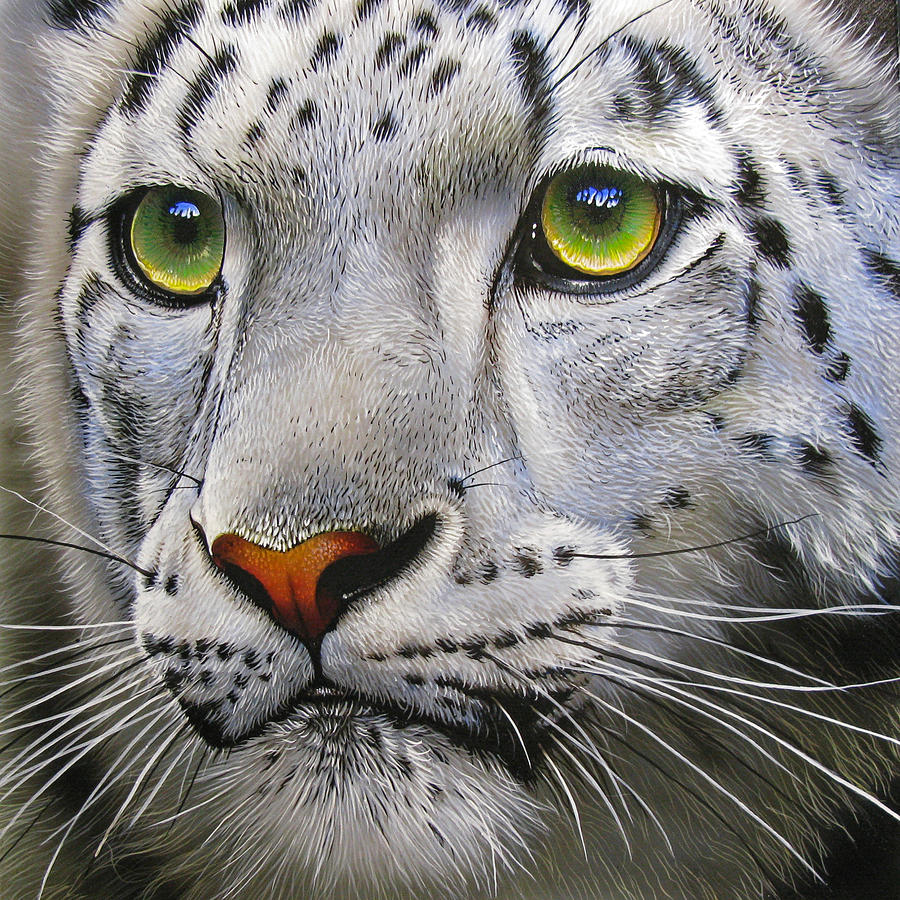Snow Leopard Painting  - Snow Leopard Fine Art Print