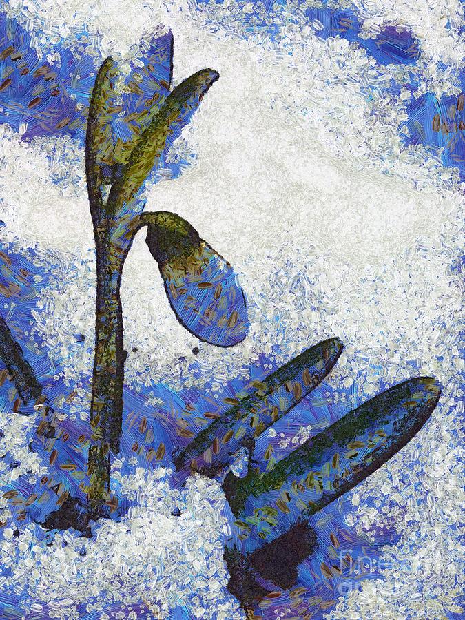 Snowdrop Painting - Snowdrop by Odon Czintos
