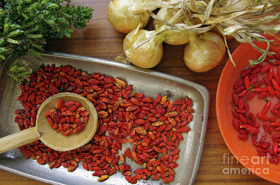 Spicy Still Life Photograph  - Spicy Still Life Fine Art Print