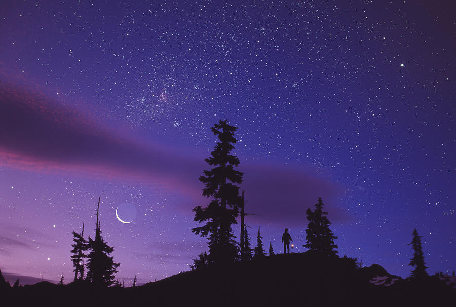 Starry Sky Photograph