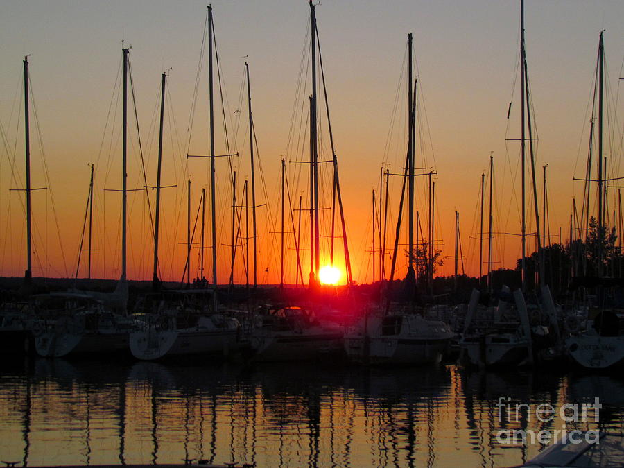Sunset Marina  Photograph  - Sunset Marina  Fine Art Print