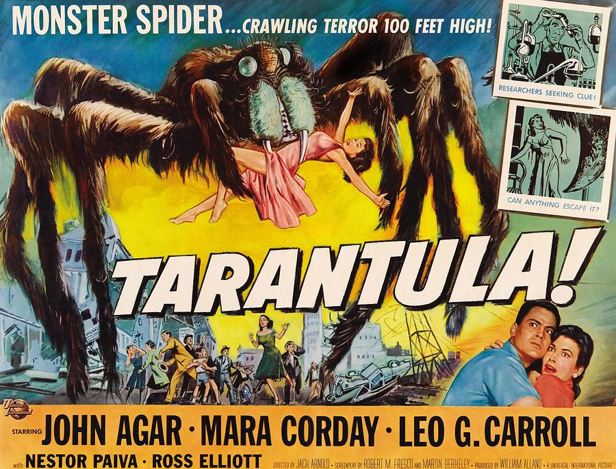 Tarantula, John Agar, Mara Corday, 1955 Photograph