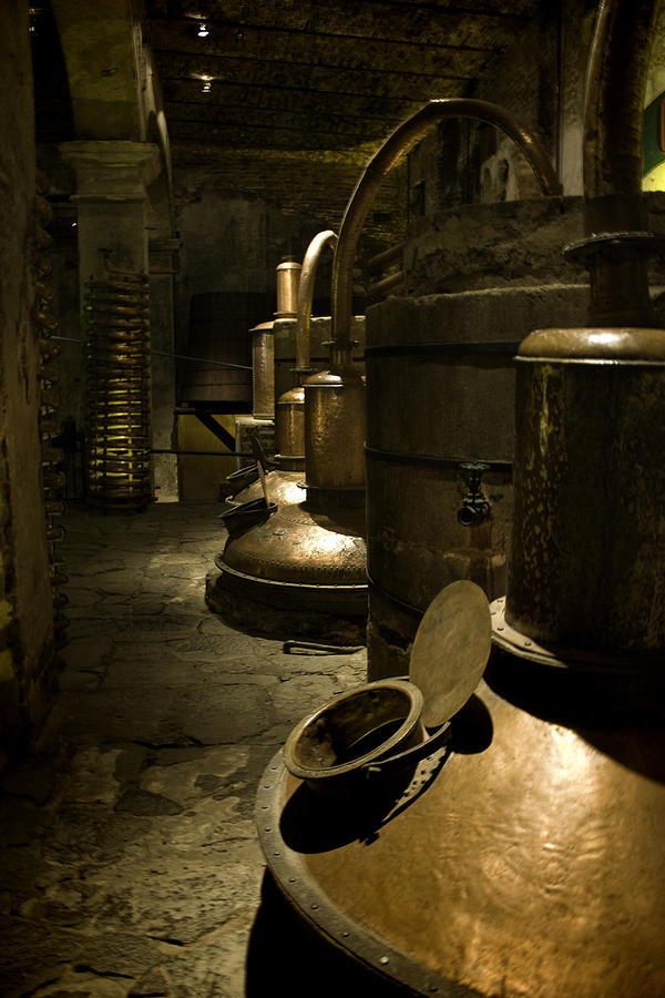 Tequilera Photograph - Tequilera No. 1 by Lynn Palmer