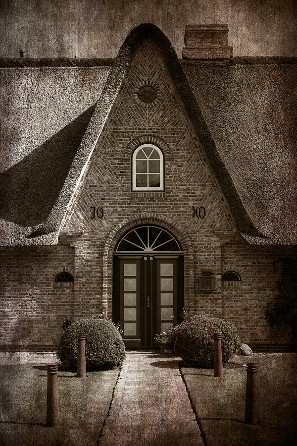 Thatch Photograph  - Thatch Fine Art Print