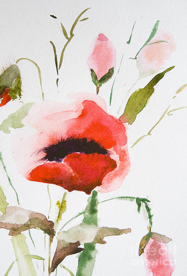 Watercolor Poppy Flower PaintingPoppies Watercolor Painting