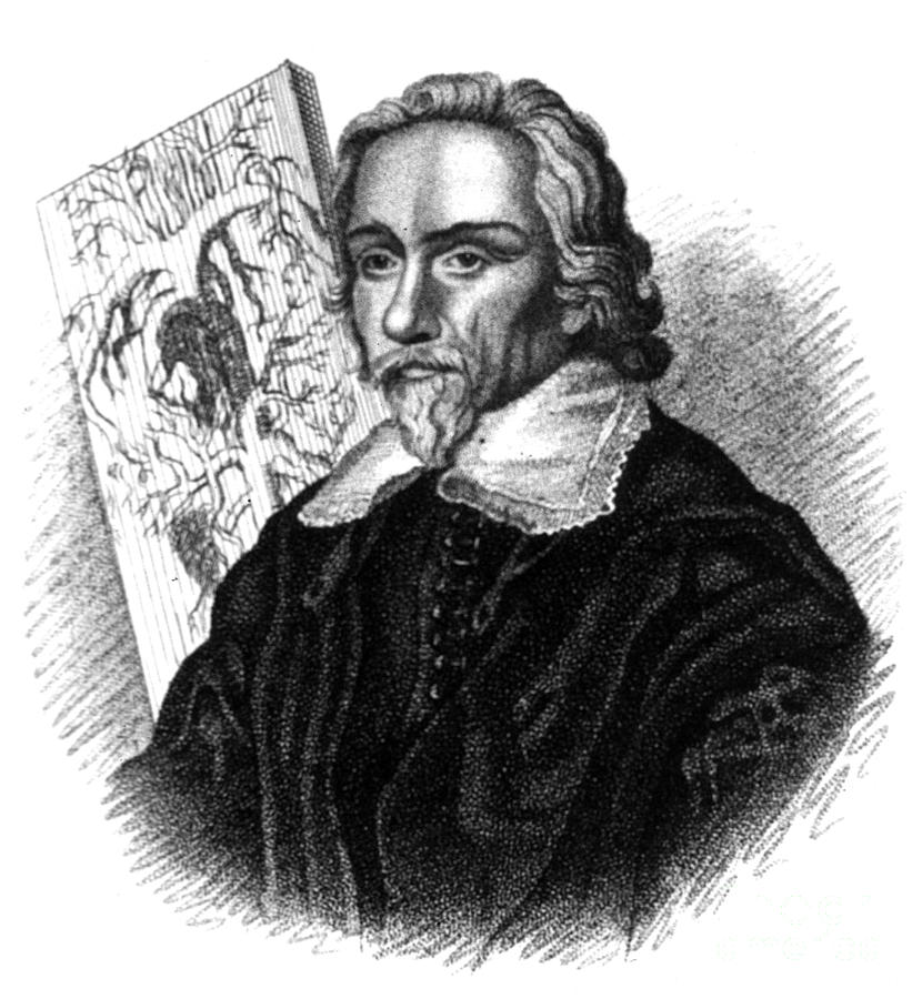 William Harvey, English Physician Photograph