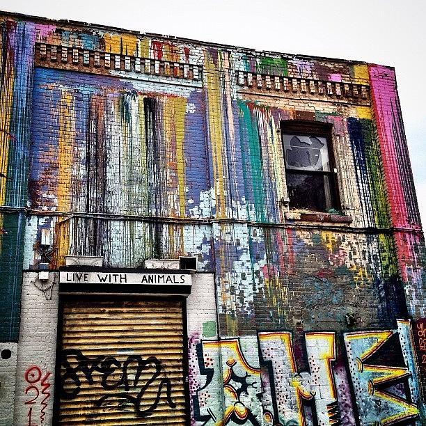 Williamsburg Graffiti Photograph