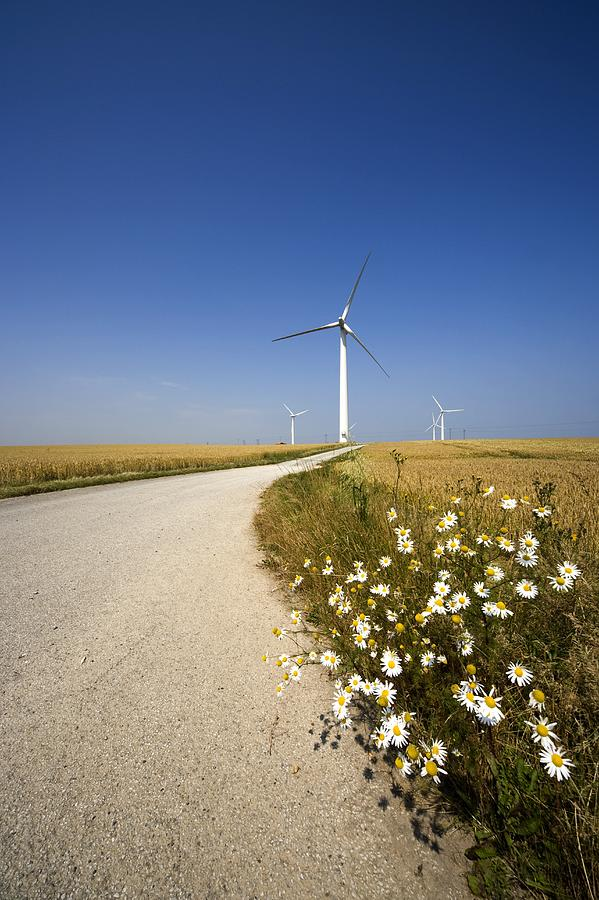 Wind Turbine, Humberside, England Photograph  - Wind Turbine, Humberside, England Fine Art Print