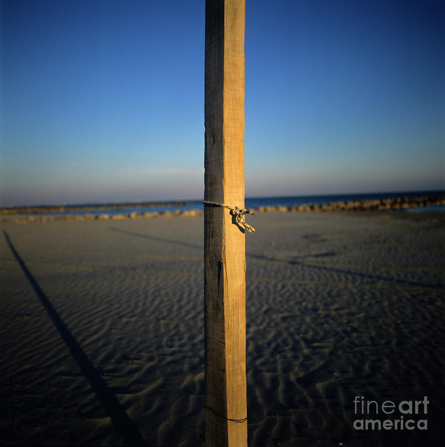Wooden Post Photograph  - Wooden Post Fine Art Print