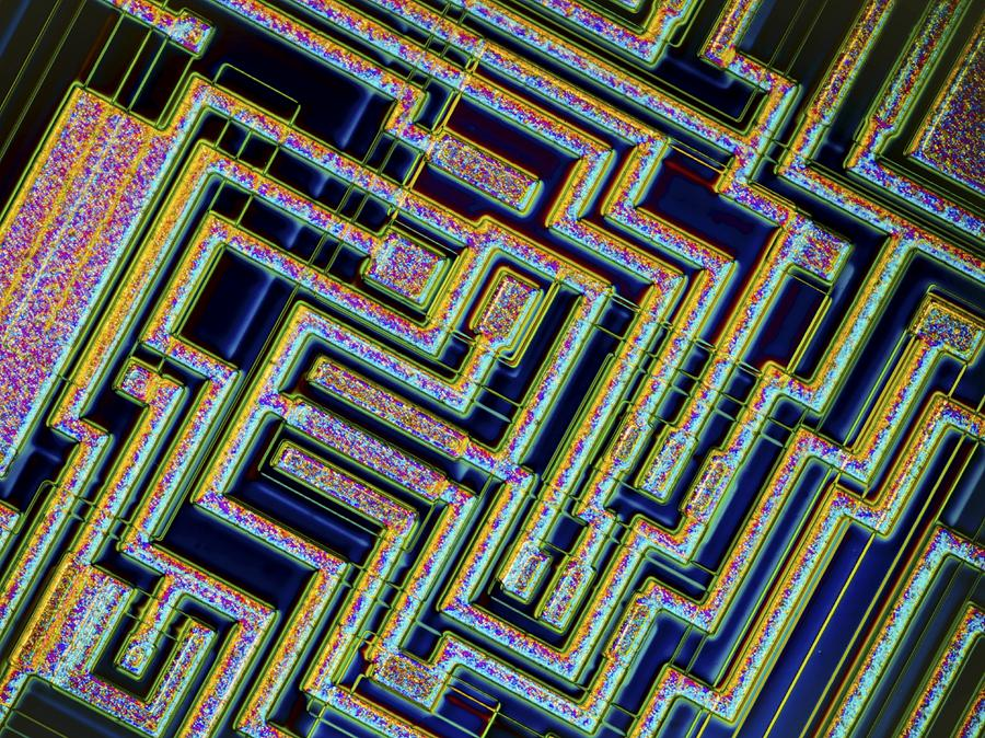 Microchip, Light Micrograph Photograph