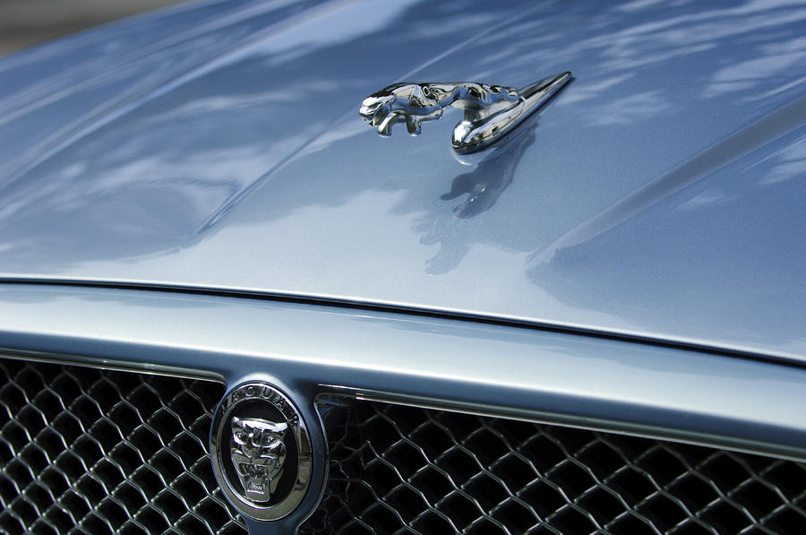 2009 Jaguar Hood Ornament Photograph