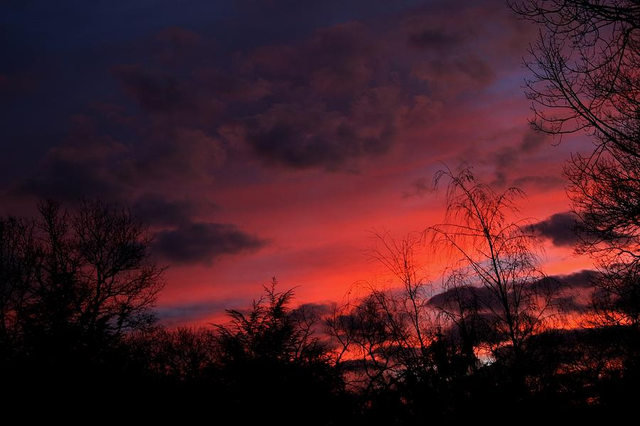 2012 Sunrise In My Back Yard Photograph
