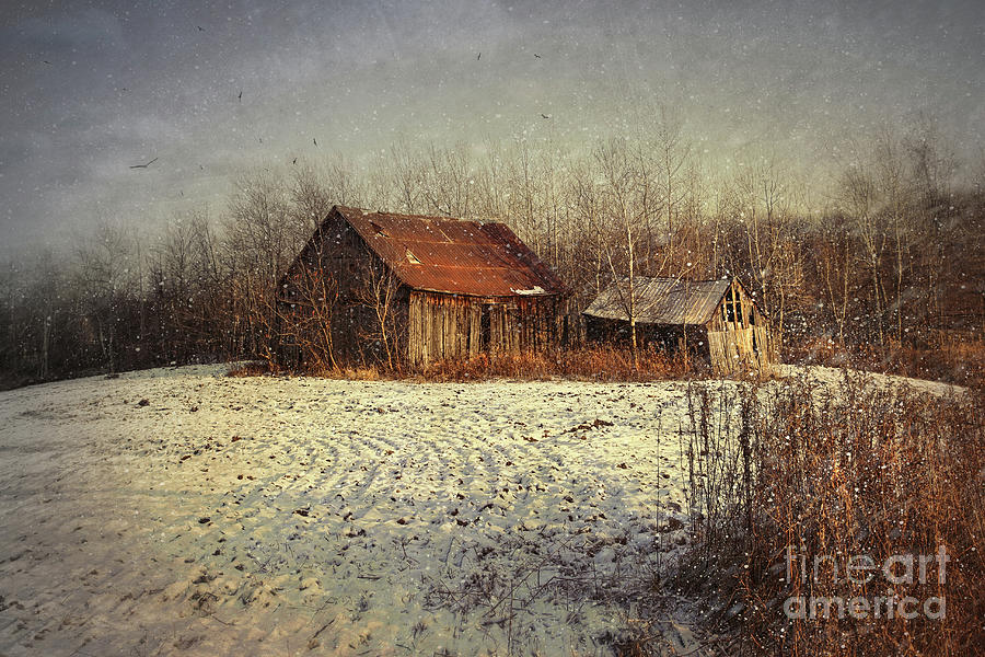 Abandoned Barn With Snow Falling Photograph