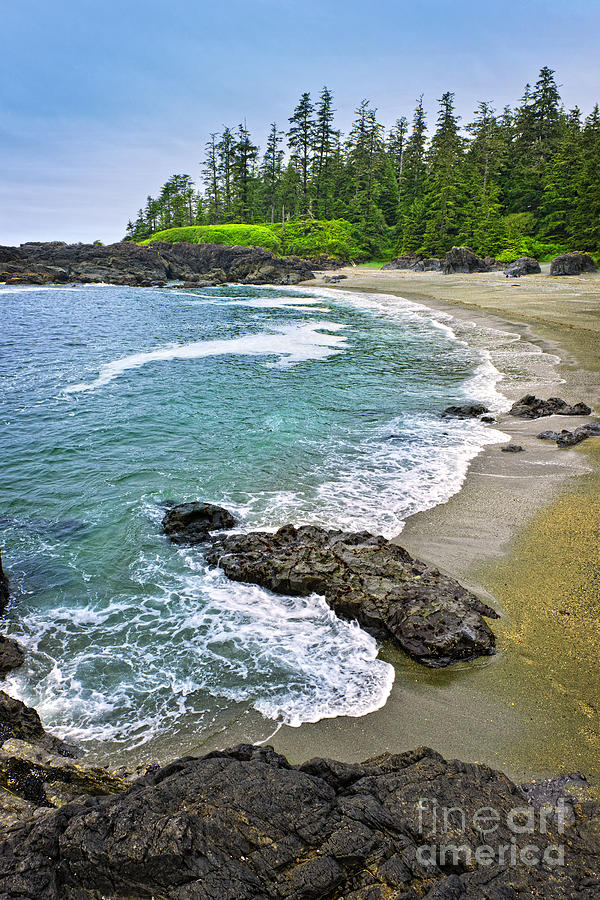Coast Of Pacific Ocean In Canada Photograph  - Coast Of Pacific Ocean In Canada Fine Art Print