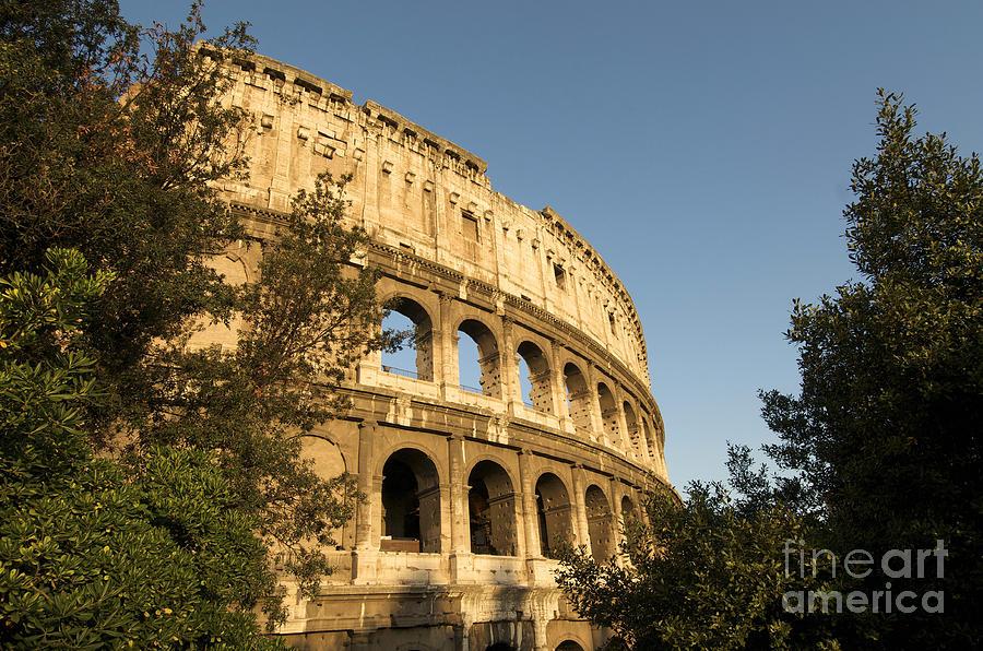 Coliseum. Rome Photograph