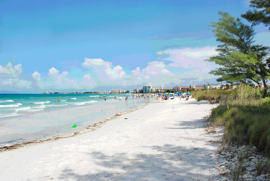 Crescent Beach On Siesta Key By Shawn Mcloughlin