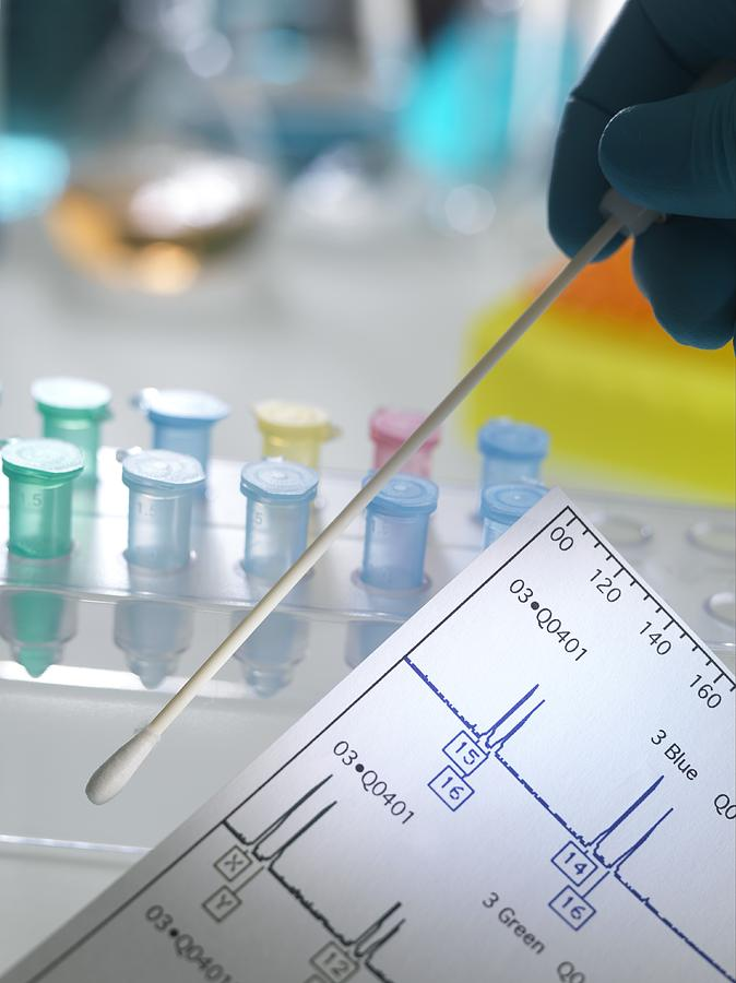 essay on dna testing With today's technology dna can help identify the rapist in a crime however, before dna technology was widely available, individuals were found.