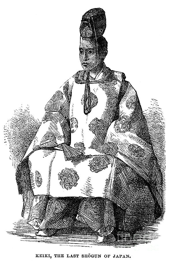 1876 Photograph - Hitotsubashi (1837-1913) by Granger