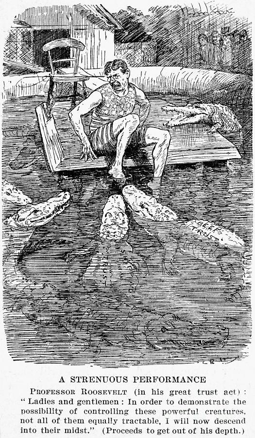1906 Photograph - Roosevelt Cartoon, 1906 by Granger