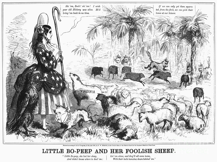 1861 Photograph - Secession Cartoon, 1861 by Granger