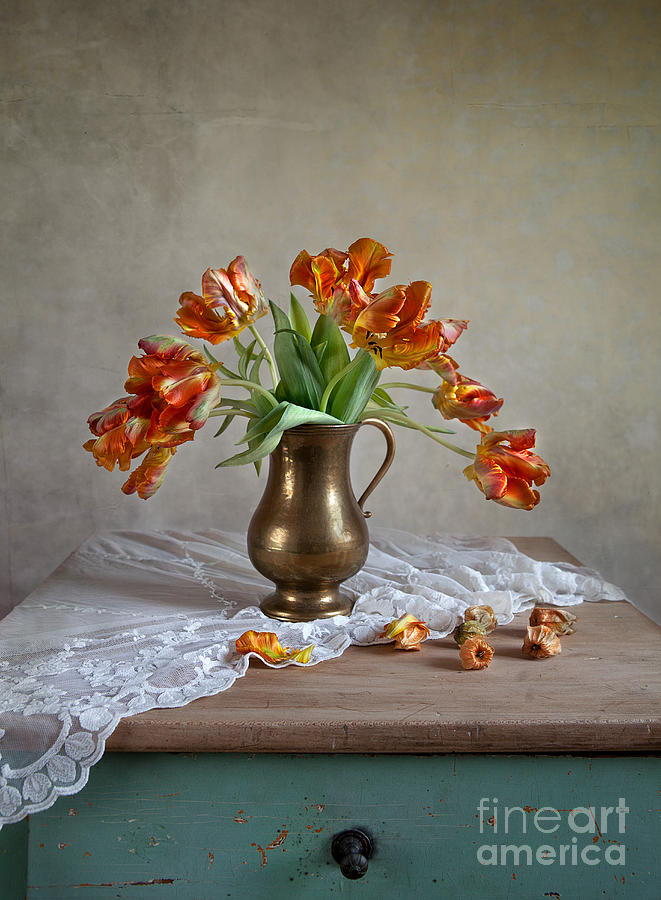 Still Life With Tulips Photograph