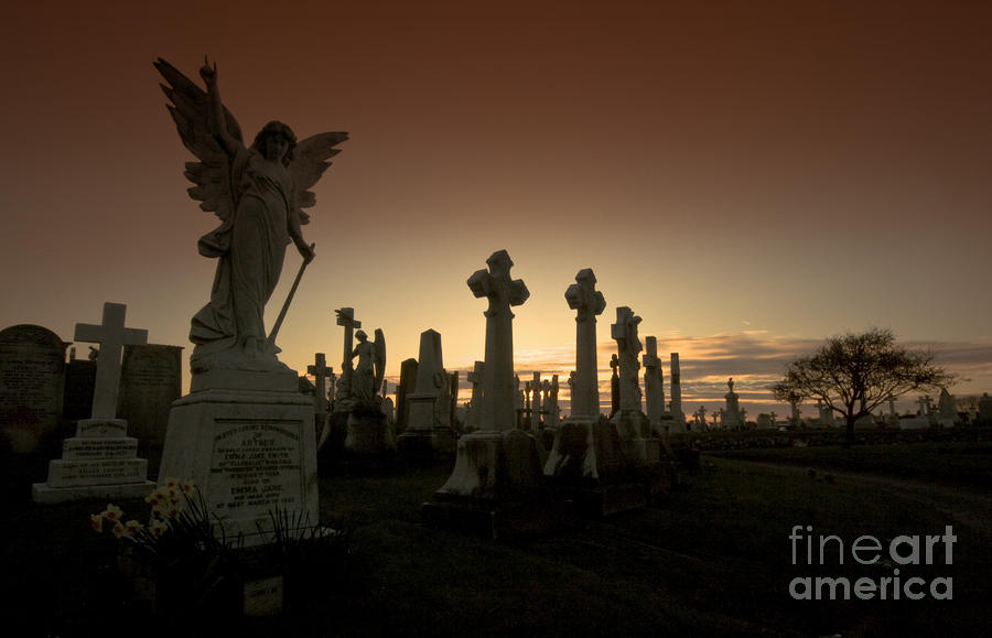 The Graveyard Photograph  - The Graveyard Fine Art Print