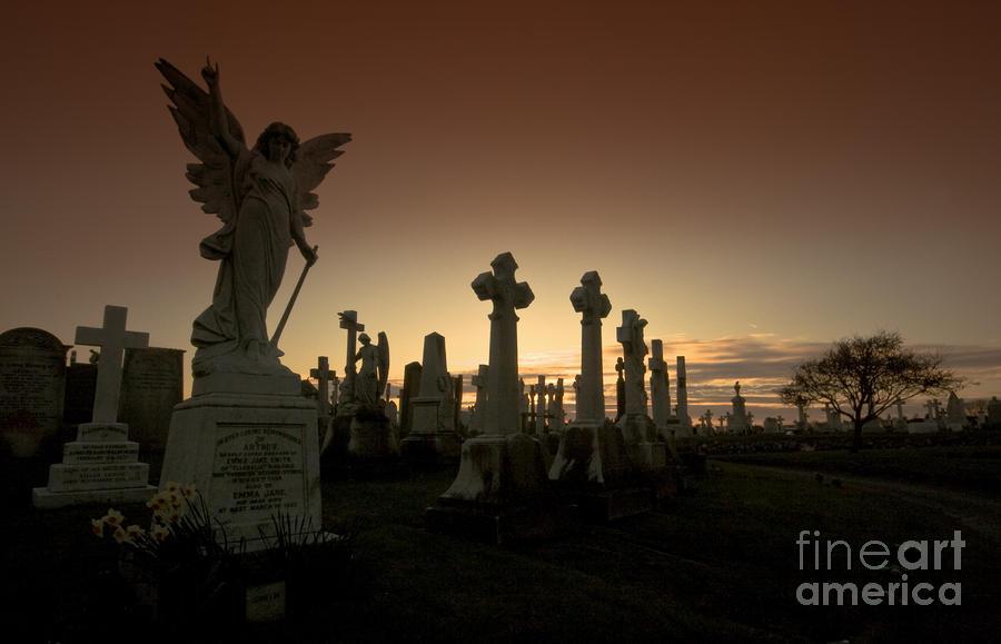 The Graveyard Photograph
