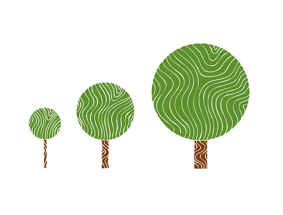3 Trees Drawing  - 3 Trees Fine Art Print