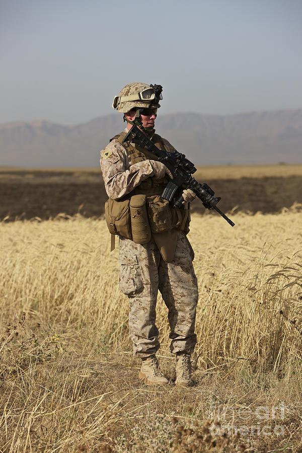 Wheat Photograph - U.s. Marine Patrols A Wadi Near Kunduz by Terry Moore