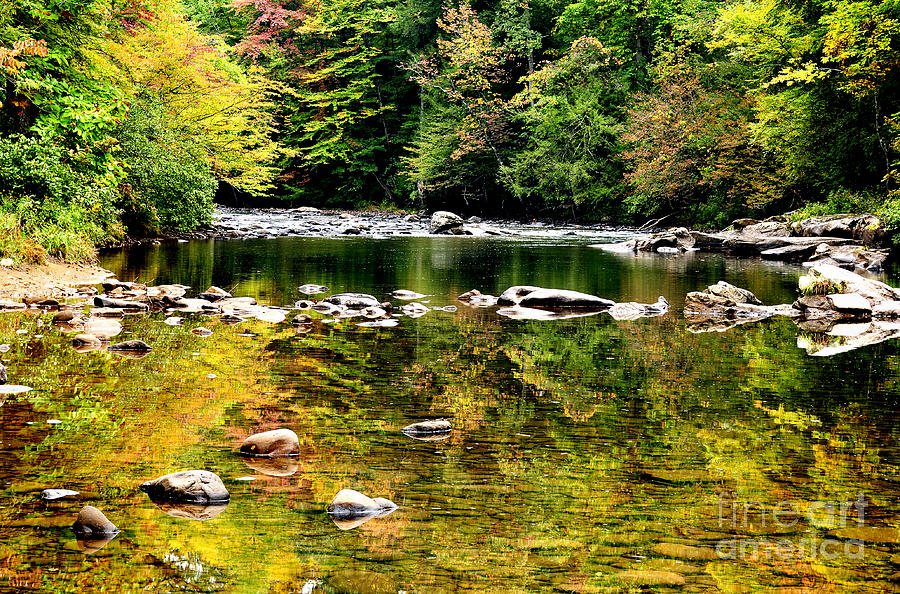 Williams River Autumn Photograph  - Williams River Autumn Fine Art Print