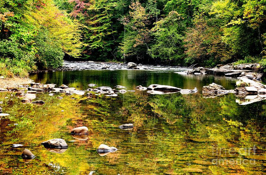 Williams River Photograph - Williams River Autumn by Thomas R Fletcher