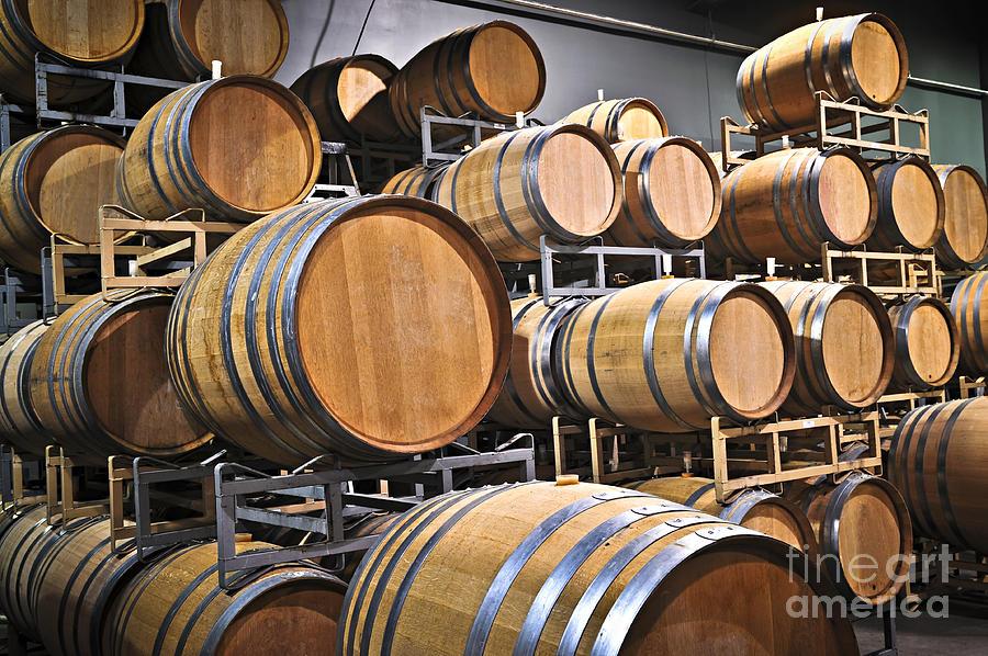 Wine Barrels Photograph