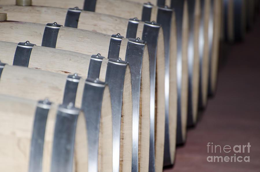 Wine Barrel Photograph - Wine Barrels by Mats Silvan
