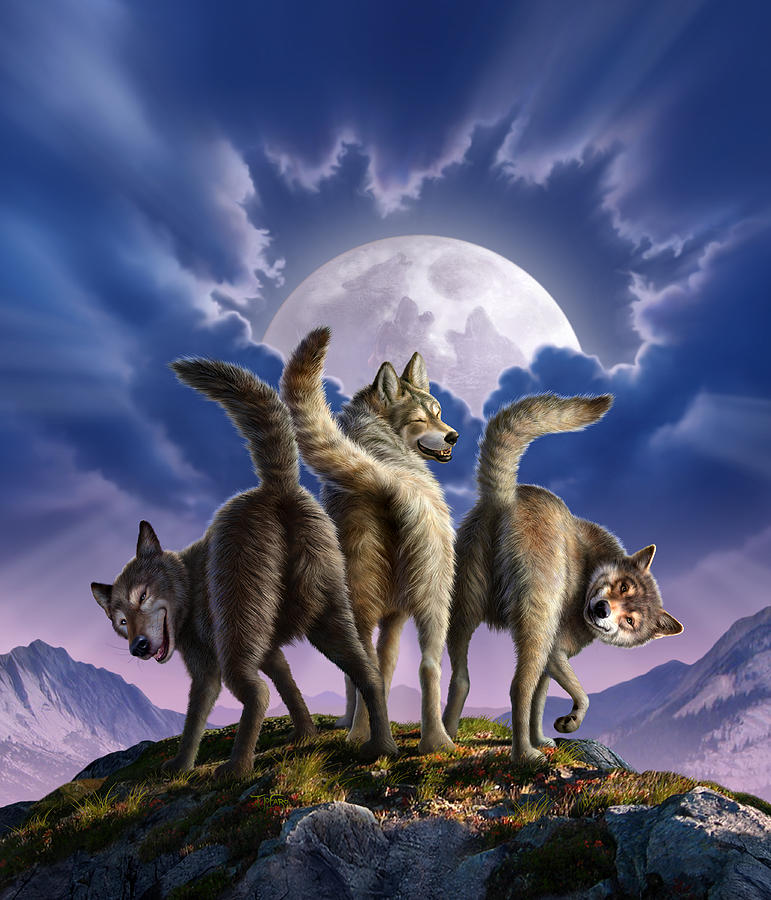 3 Wolves Mooning Digital Art  - 3 Wolves Mooning Fine Art Print