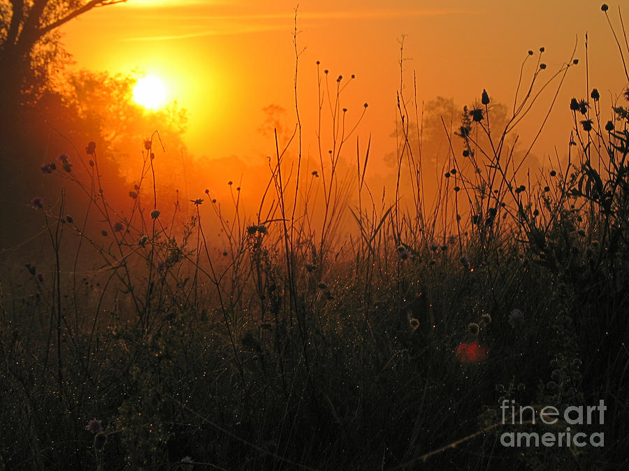 Sunset Photograph  - Sunset Fine Art Print