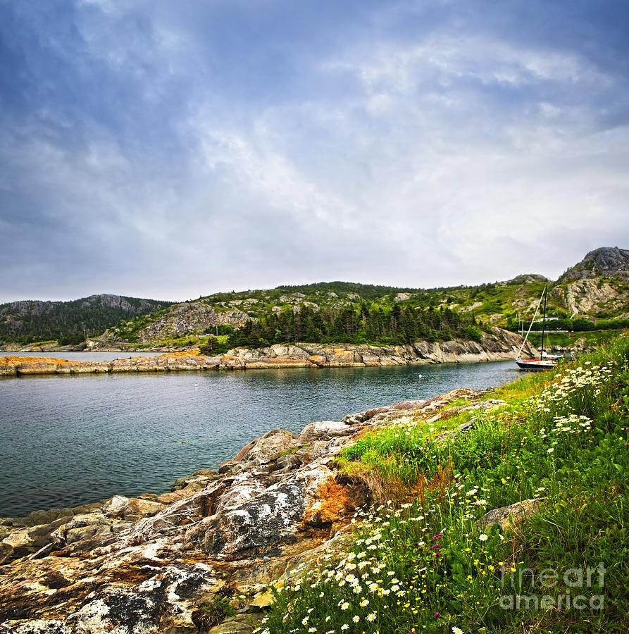 Atlantic Coast In Newfoundland Photograph