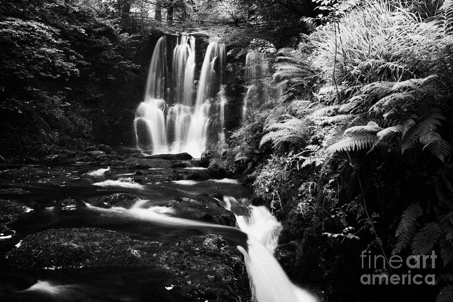 Ess-na-crub Waterfall On The Inver River In Glenariff Forest Park County Antrim Northern Ireland Uk Photograph  - Ess-na-crub Waterfall On The Inver River In Glenariff Forest Park County Antrim Northern Ireland Uk Fine Art Print