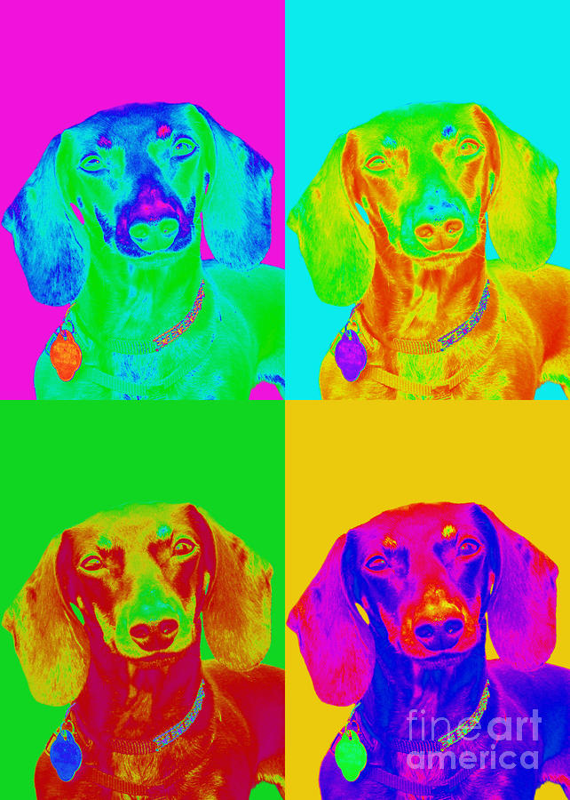 Pop Art Dachshund Digital Art