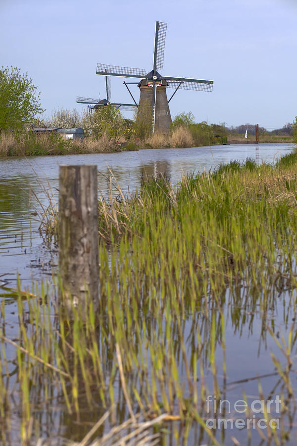 Mills In Netherlands Photograph  - Mills In Netherlands Fine Art Print