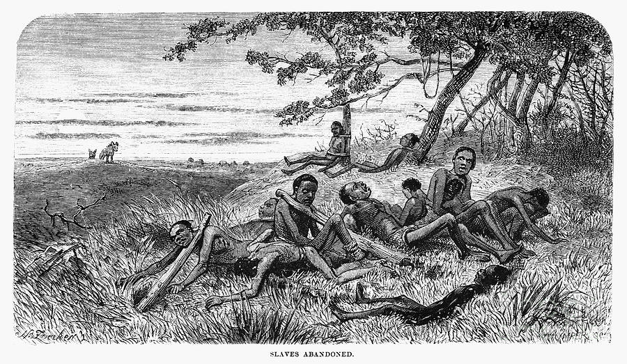 Africa slave trade is a photograph by granger which was uploaded on
